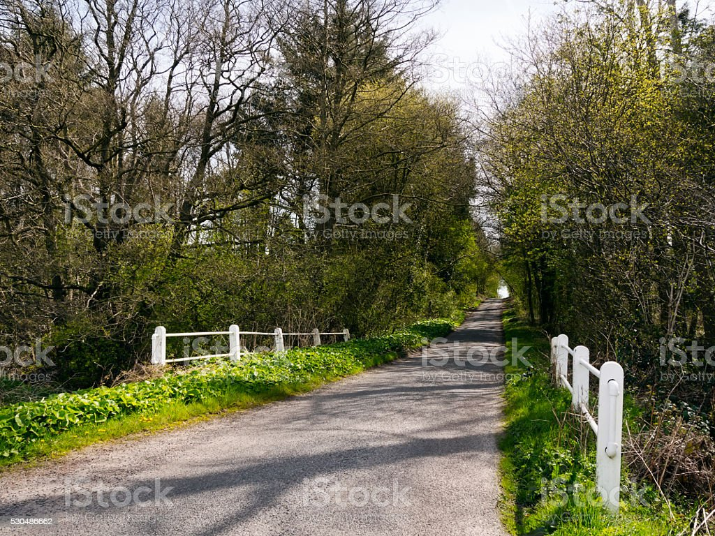 Narrow Norfolk lane with bridge stock photo