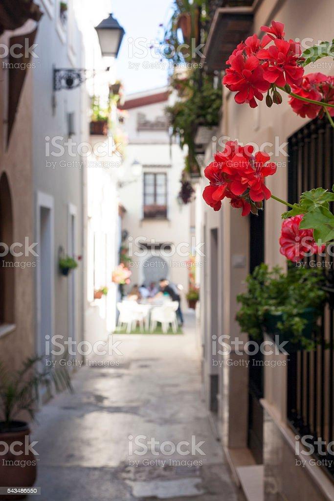 Narrow old town street of Badajoz stock photo