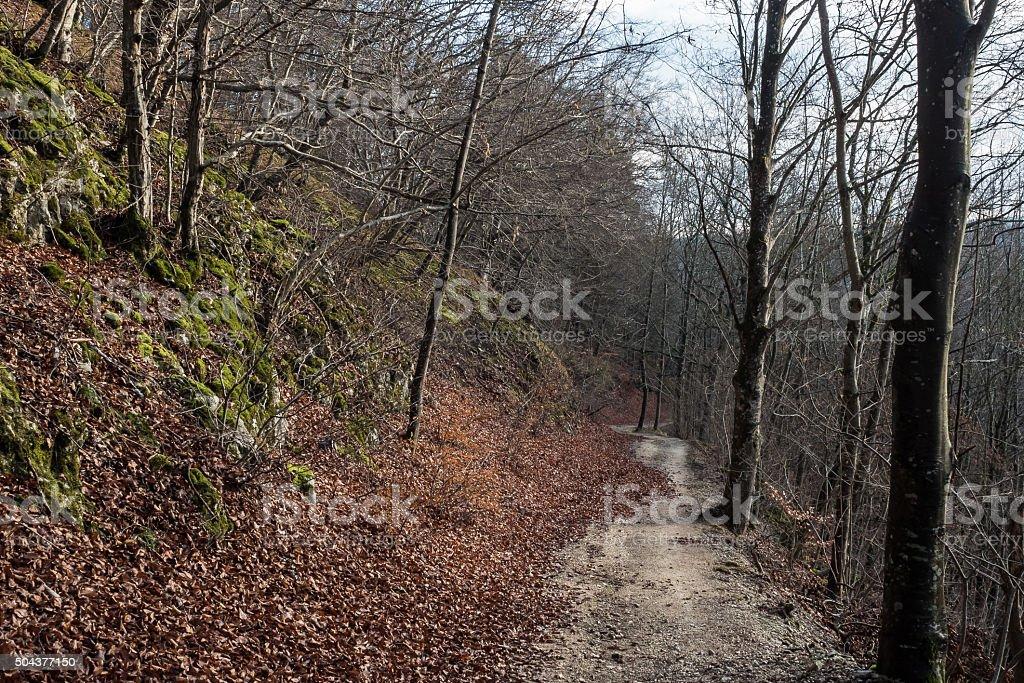 Narrow path stock photo