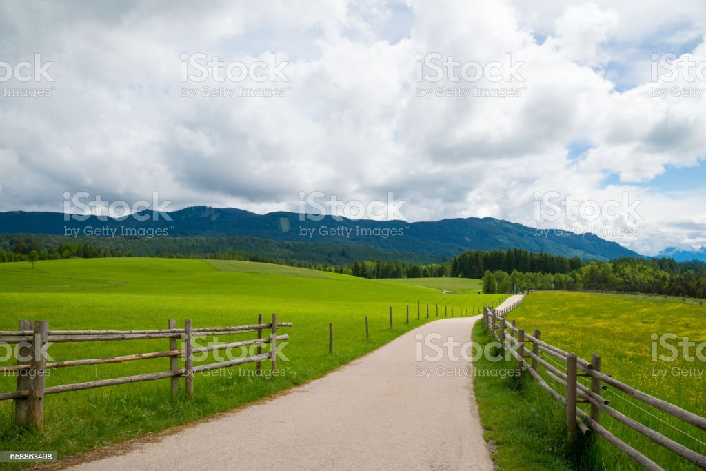 Narrow road passing through a green field in Bavarian Alps. stock photo