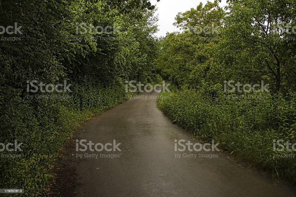 narrow road royalty-free stock photo