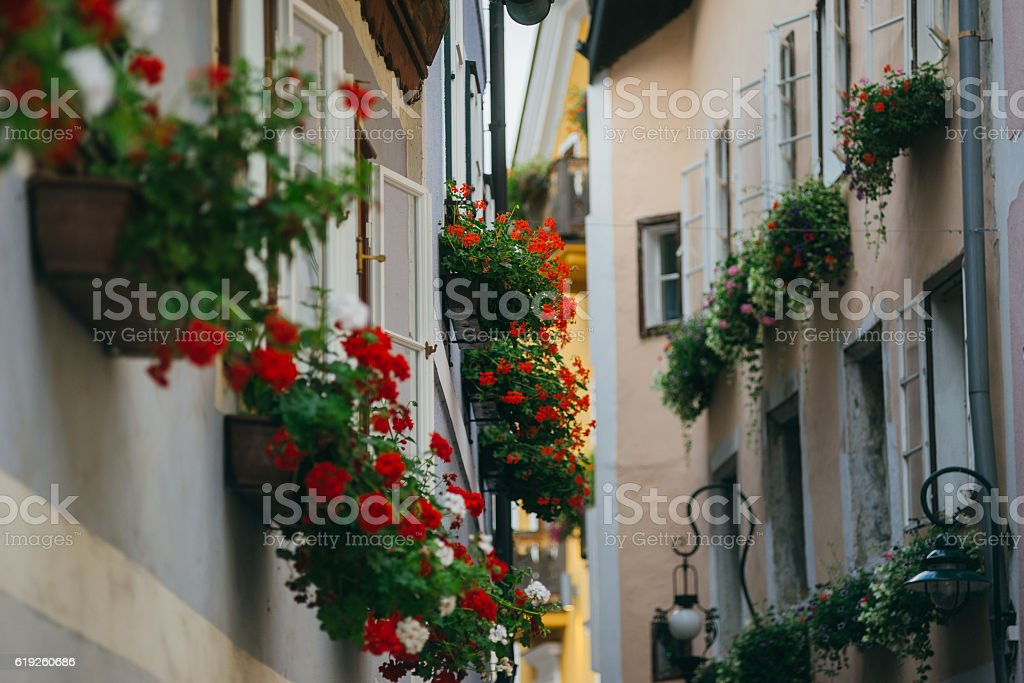 Narrow street decorated with many flowers, Hallstatt, Austria stock photo