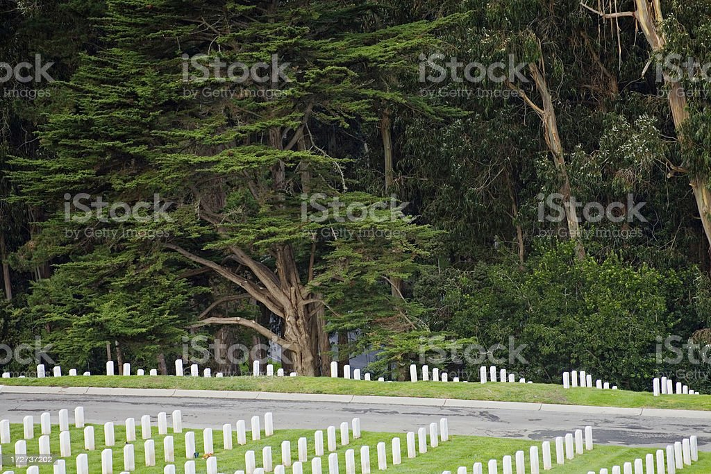 National Cemetary of San Francisco - in the Presidio Forest stock photo