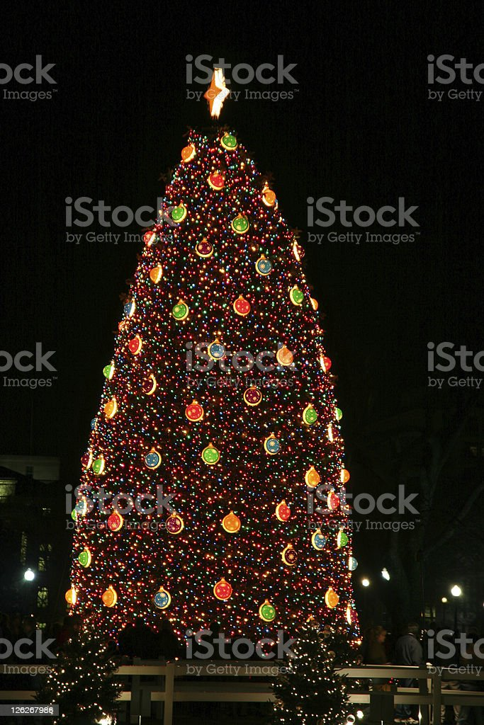 National Christmas Tree in Washington DC (USA) royalty-free stock photo