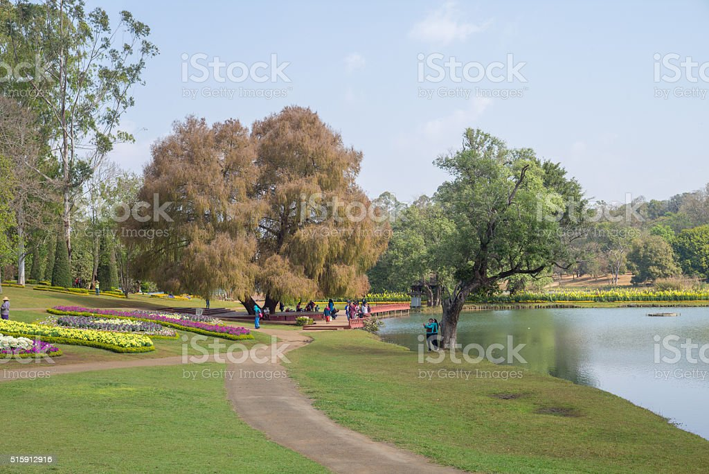 National Kandawgyi Botanical Gardens stock photo