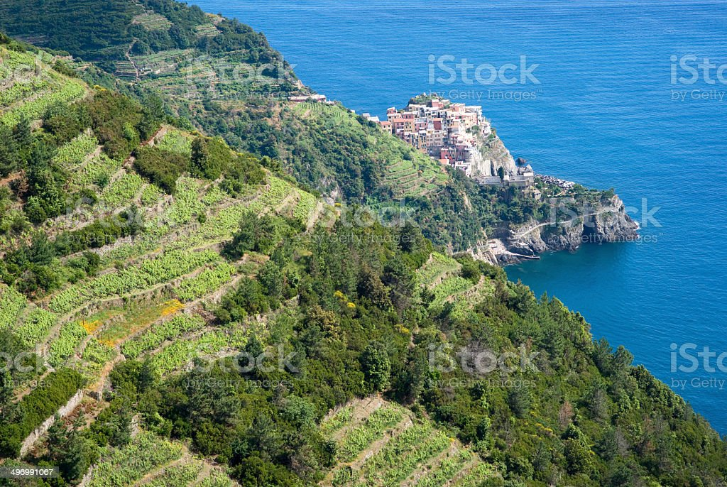 National Park of Cinque Terre stock photo