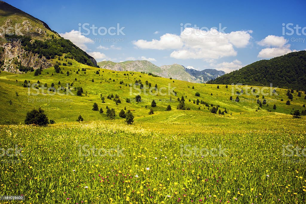 National Park Sutjeska, Bosnia and Herzegovina stock photo