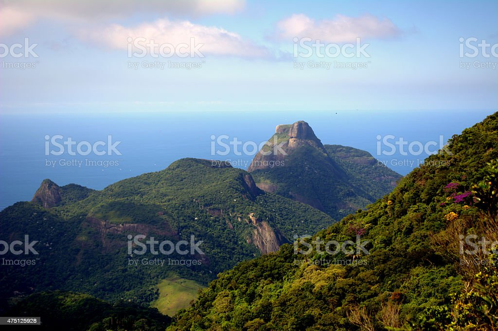 National Park Tijuca Forest stock photo