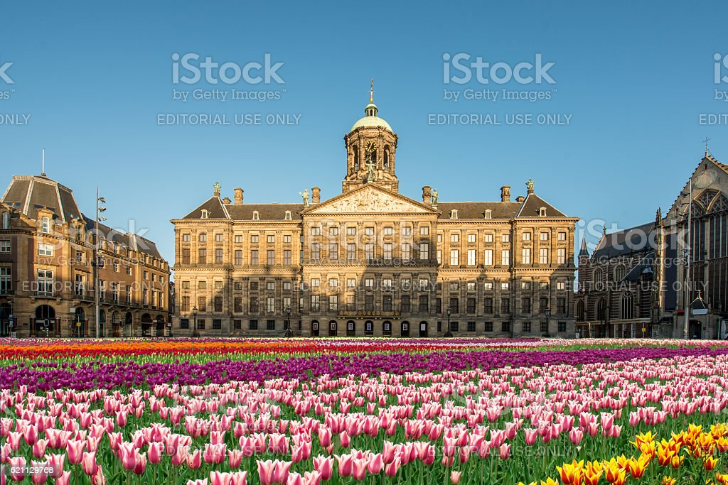 National tulip day at the Dam Square with Royal Palace stock photo