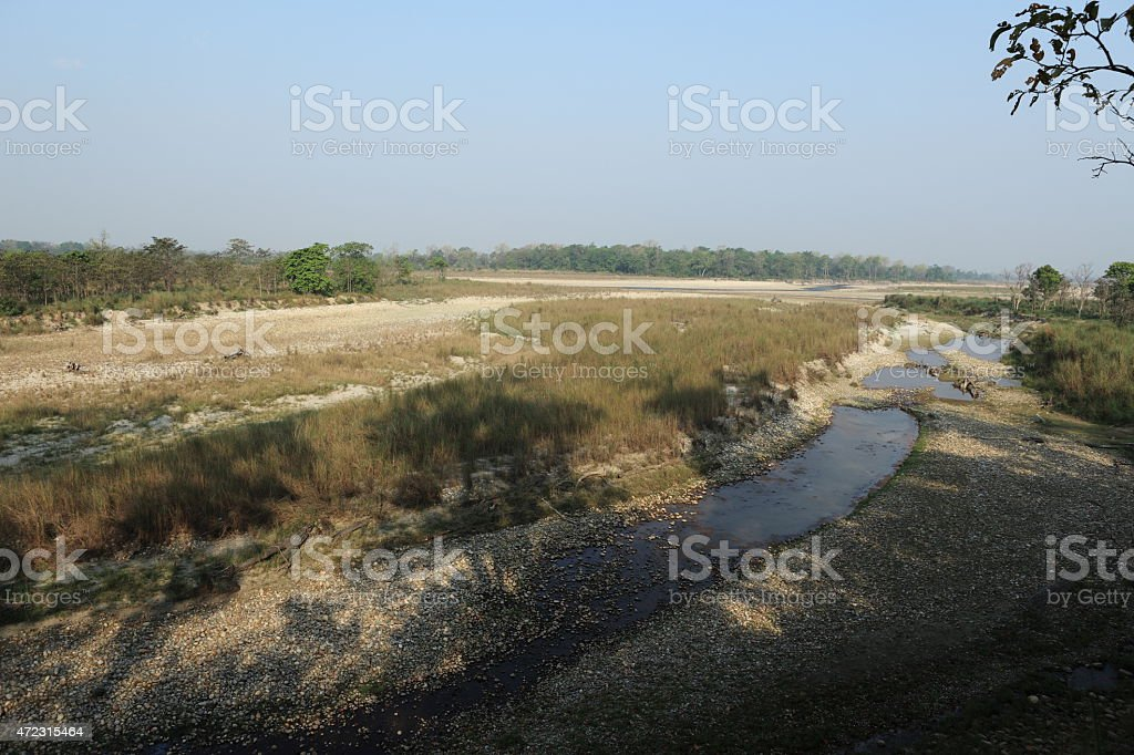 Nationalpark Bardia in Indien stock photo