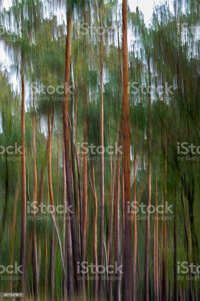 Natur als Kunst stock photo