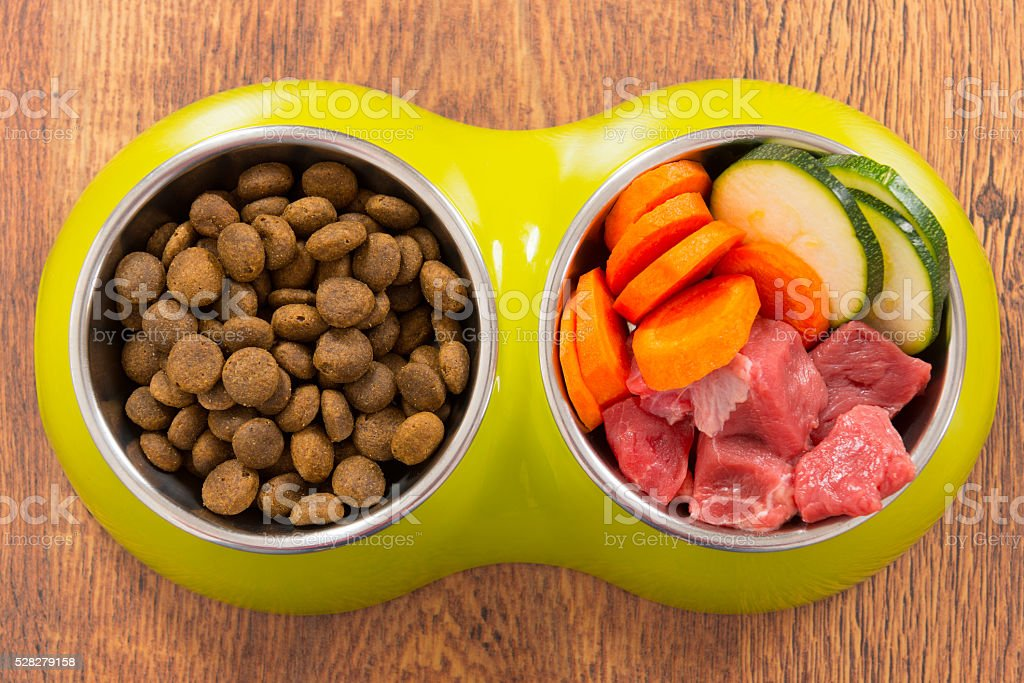 Natural and dry dog's food stock photo