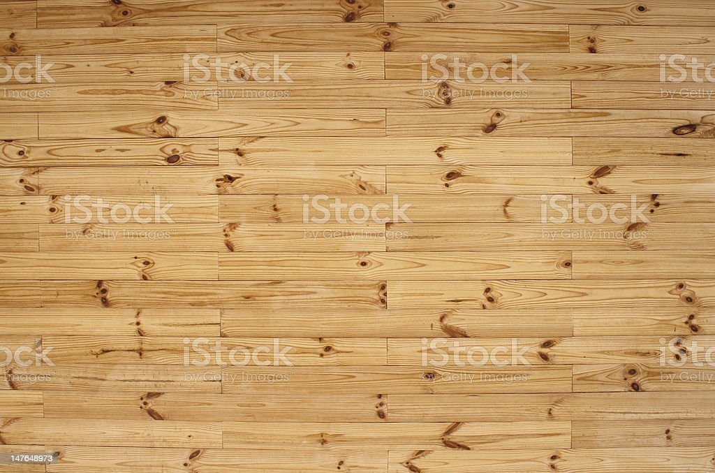 natural arboreal structure stock photo