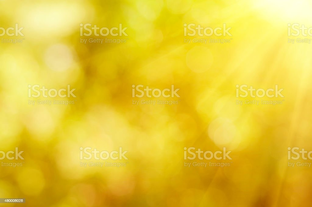 Natural autumn  bokeh stock photo