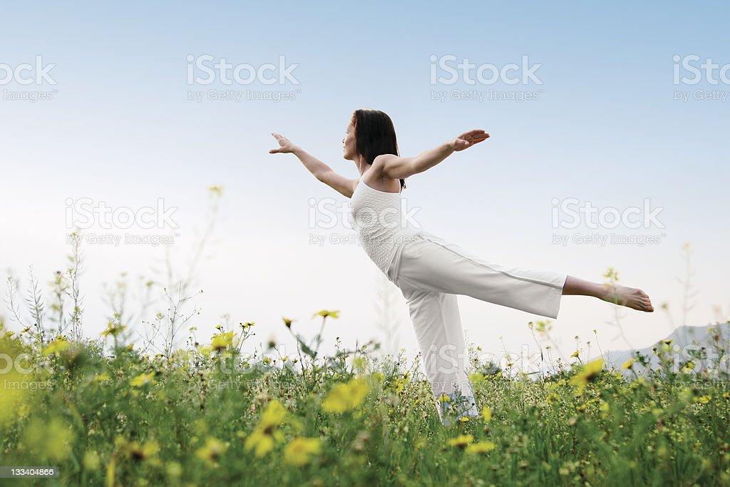 natural balance stock photo
