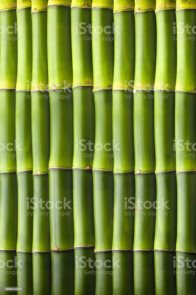 Natural bamboo seamless wall pattern royalty-free stock photo