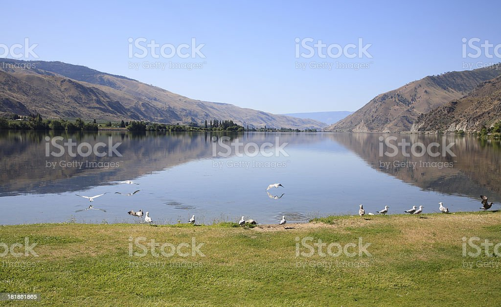 Natural Beauty And Nature In Washington State stock photo