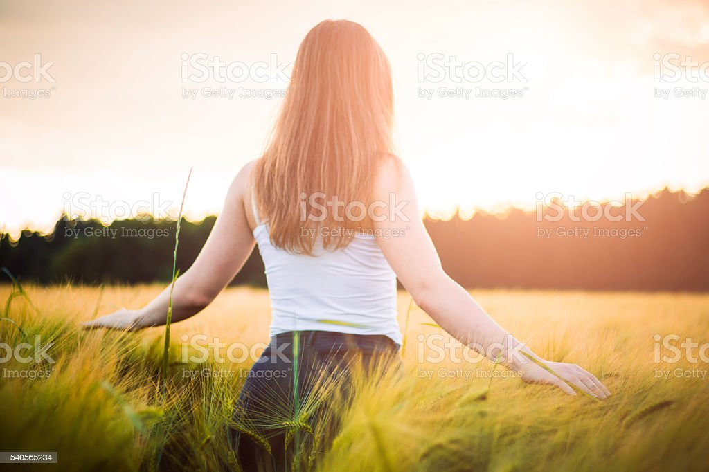 Natural beauty. Beautiful girl in a wheat field stock photo