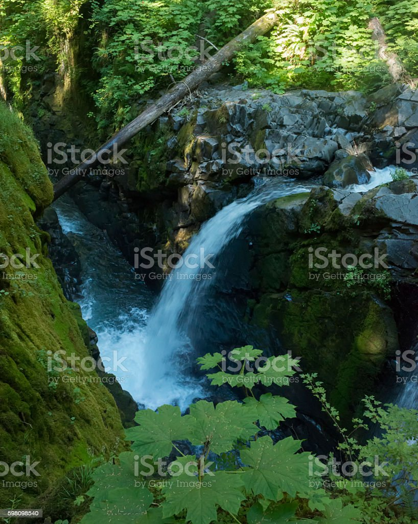 Natural Beauty Sol Duc Fall in Olympic National Park.USA stock photo