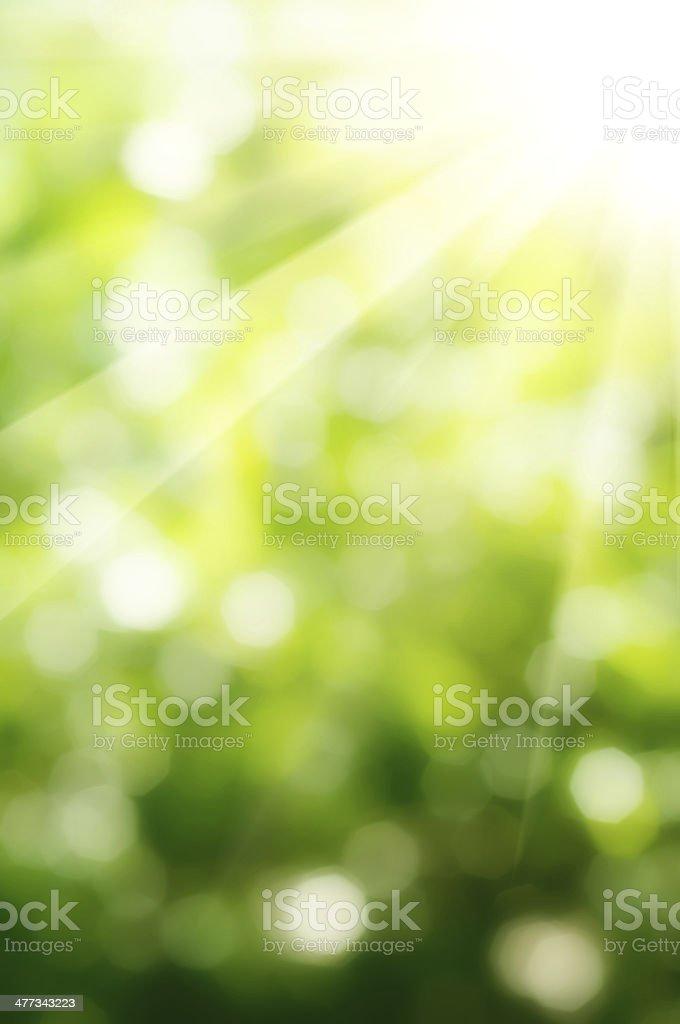Natural bokeh royalty-free stock photo