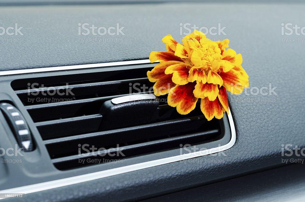 Natural car air freshener stock photo
