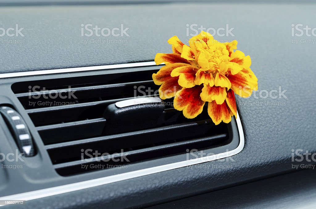 Natural car air freshener stock photo