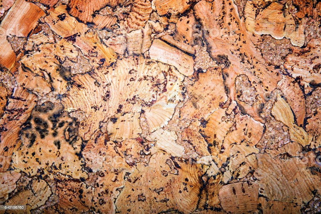 Natural cork texture background. Construction and interior background stock photo