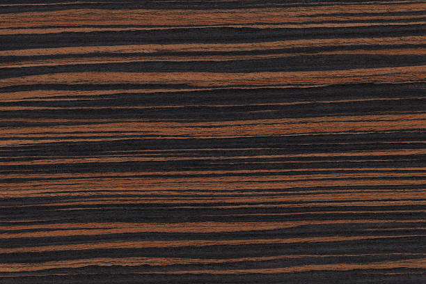 Image result for ebony tree natural