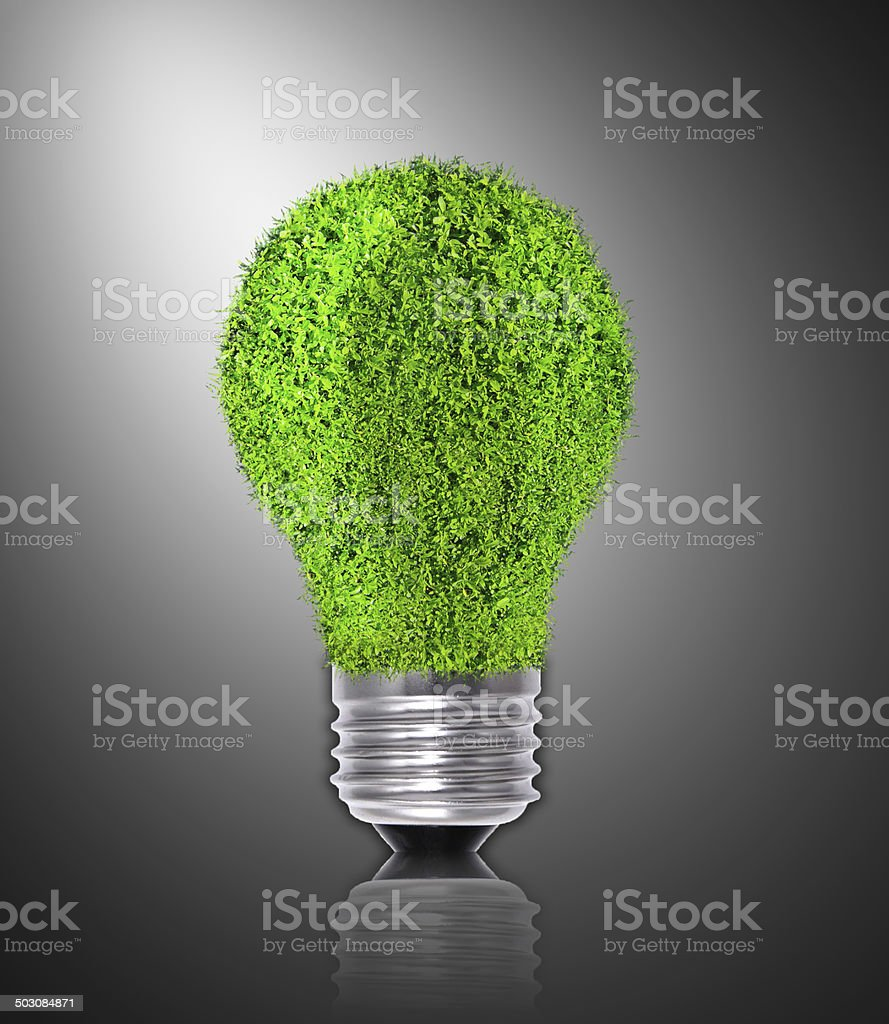 Natural energy concept - green renewable power stock photo