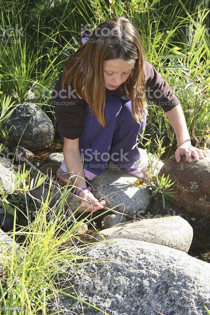 Natural Exploration royalty-free stock photo
