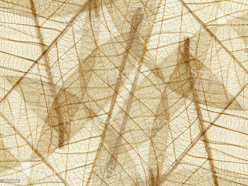 Natural fiber pattern stock photo