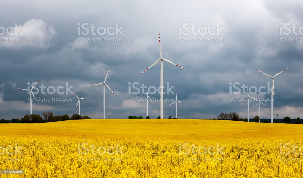 Natural Forces stock photo