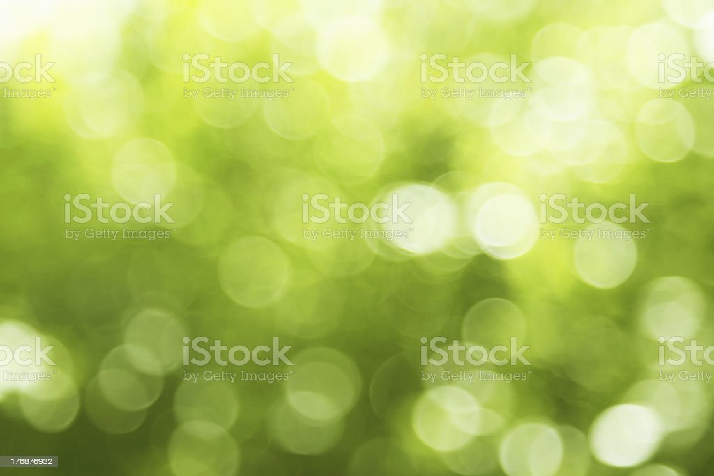 Natural forest bokeh. royalty-free stock photo