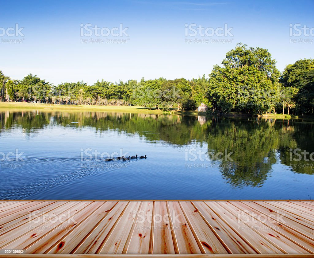 Natural forest garden and river on top wood platform stock photo