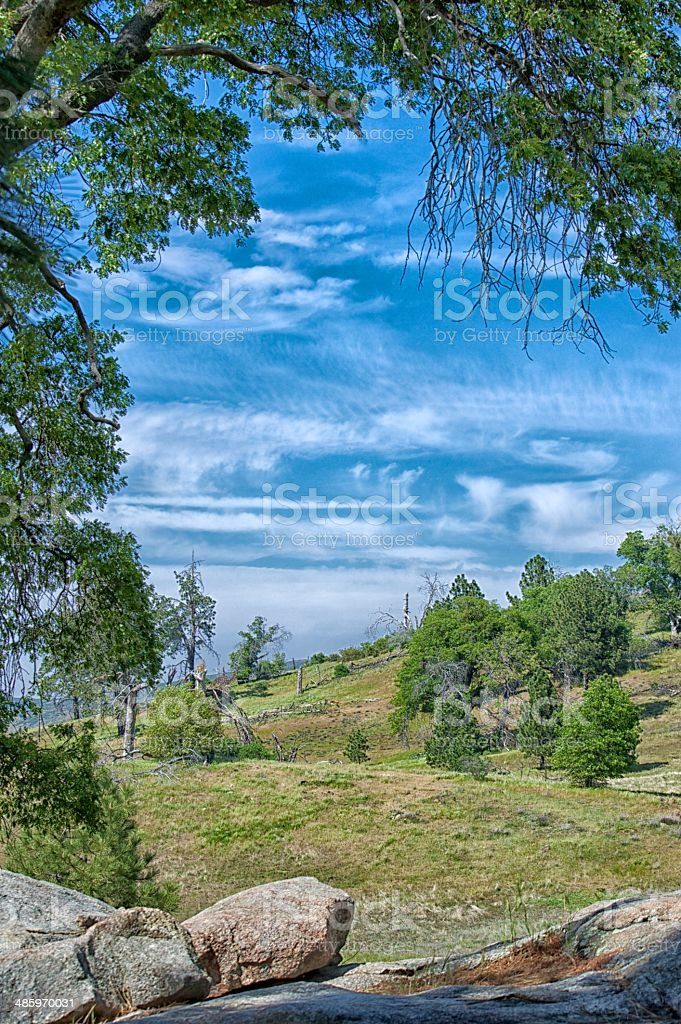 natural frame tree and sky stock photo