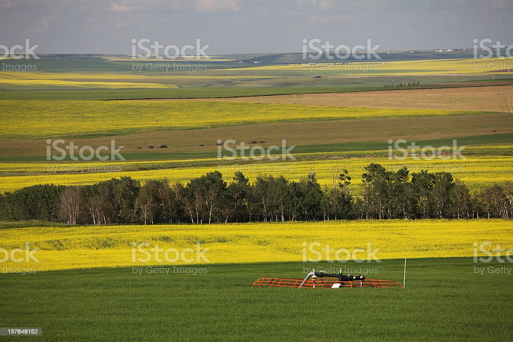 Natural Gas Wellhead on the Canadian Prairie stock photo