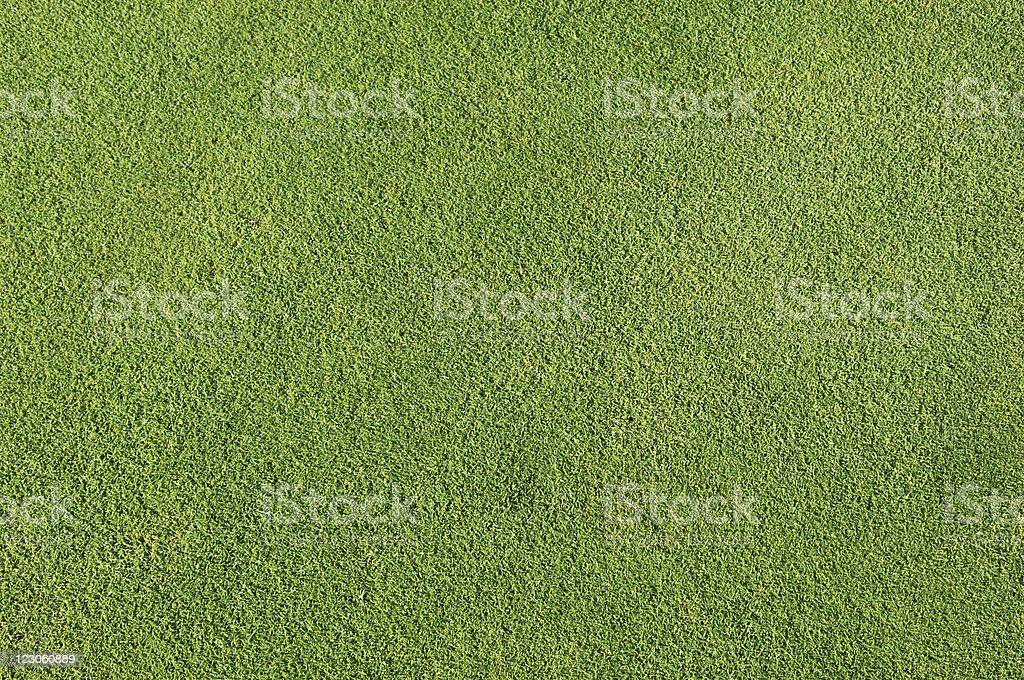 Natural golf grass background stock photo