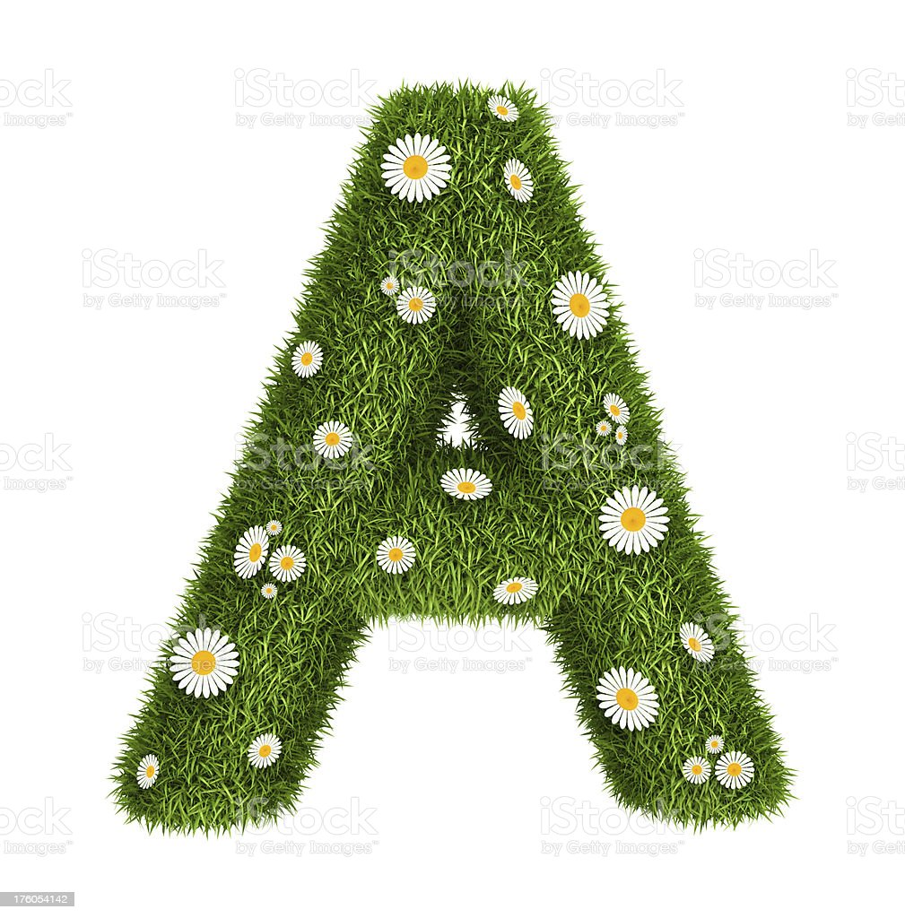 Natural grass letter A royalty-free stock photo