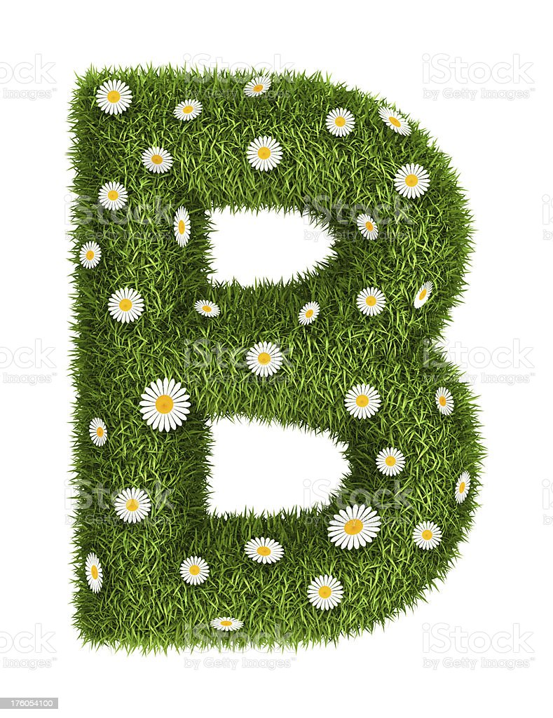 Natural grass letter B royalty-free stock photo