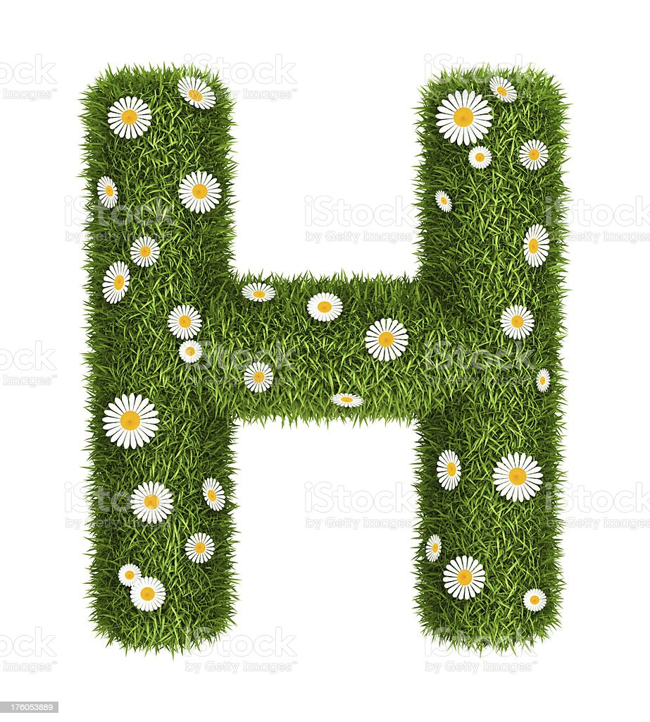 Natural grass letter H royalty-free stock photo
