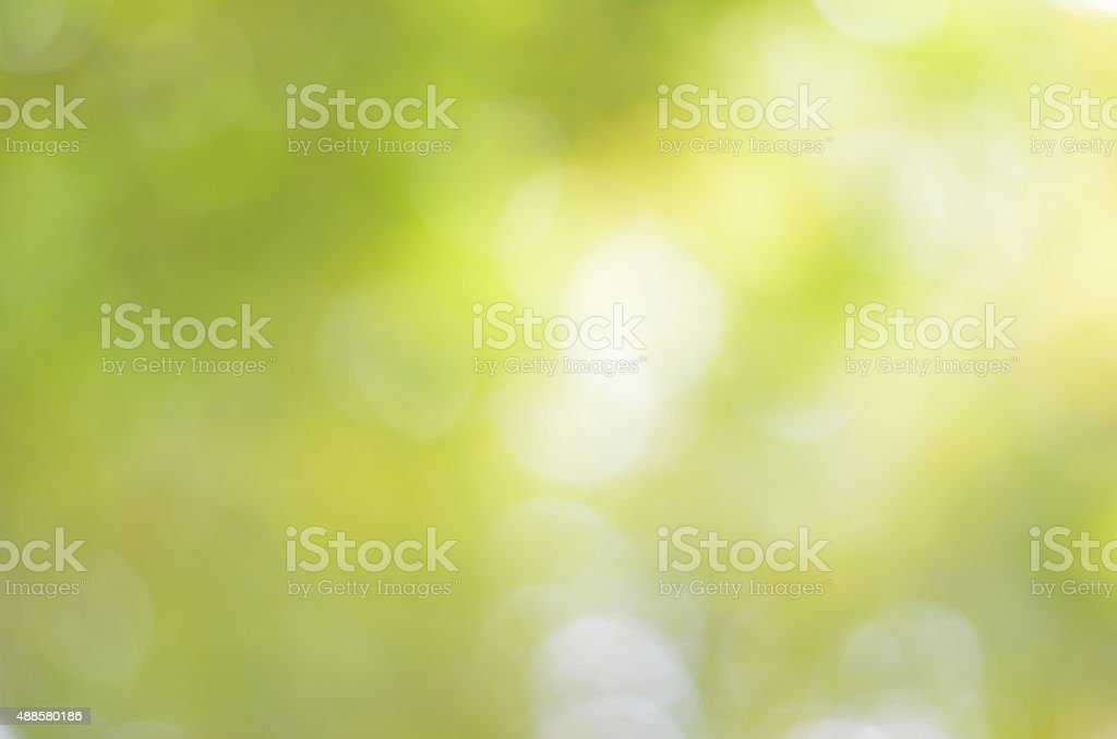 Natural green blur bokeh abstract background stock photo
