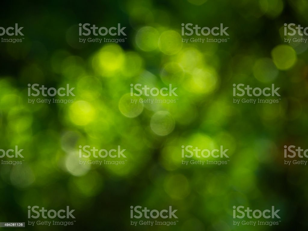 Natural green blurred background stock photo