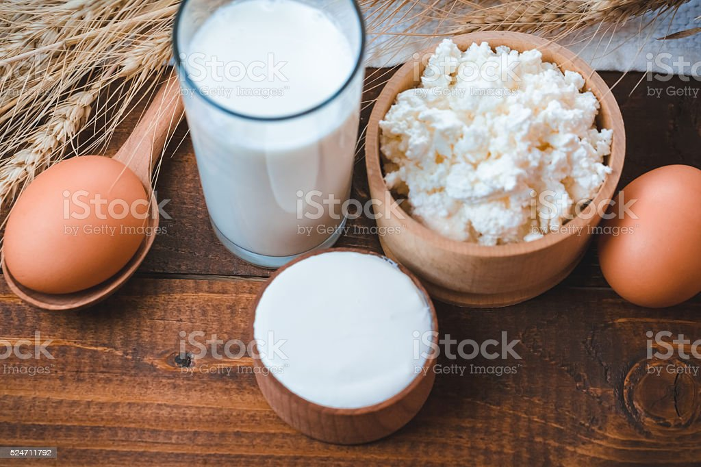Natural homemade products: milk, cheese, sour cream and eggs stock photo