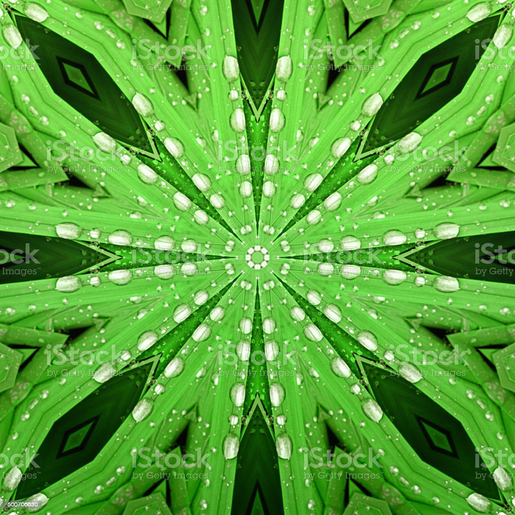Natural kaleidoscope: mirrored image of green leaves stock photo