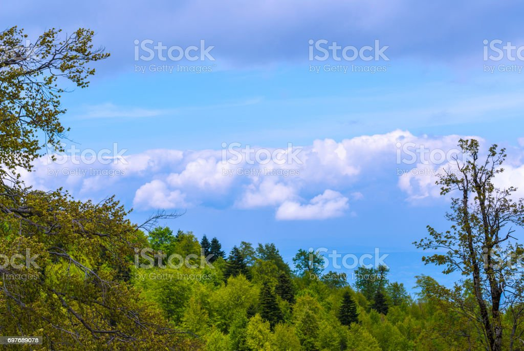 Natural Landscape With Fields and Forests Over Cloudy Sky stock photo