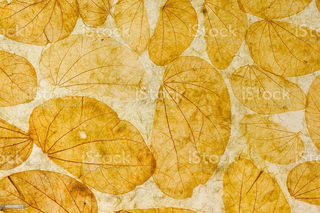 Natural leaves paper texture background royalty-free stock photo