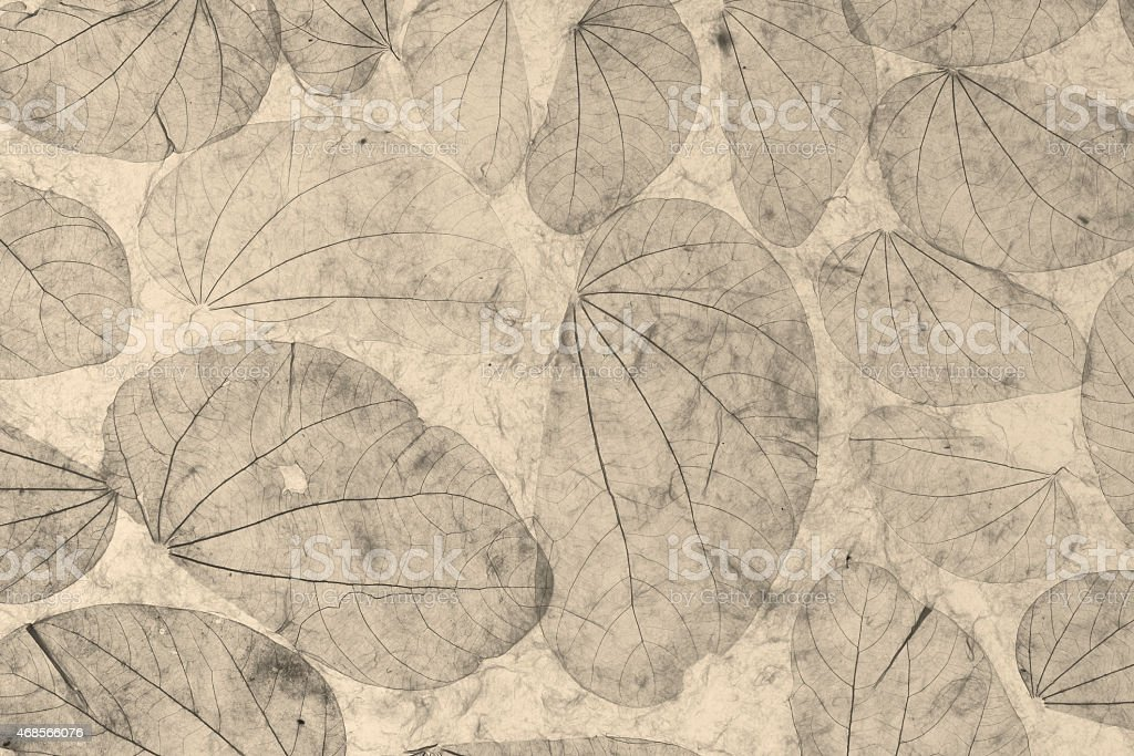 Natural leaves paper texture black and white background royalty-free stock photo