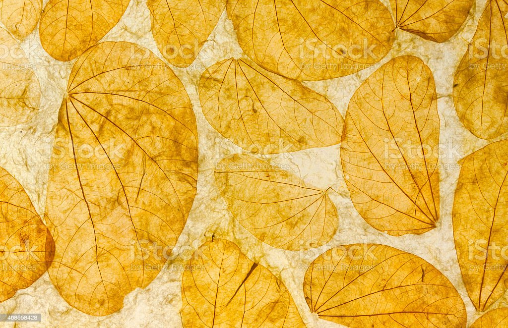 Natural leaves paper texture closeup royalty-free stock photo