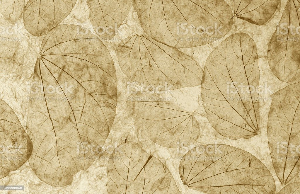 Natural leaves paper texture closeup vintage style royalty-free stock photo