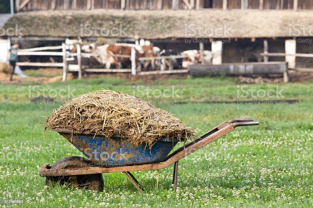 Natural manure stock photo